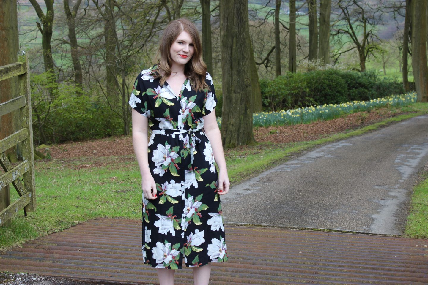 What I Wore | Six Summer Dresses