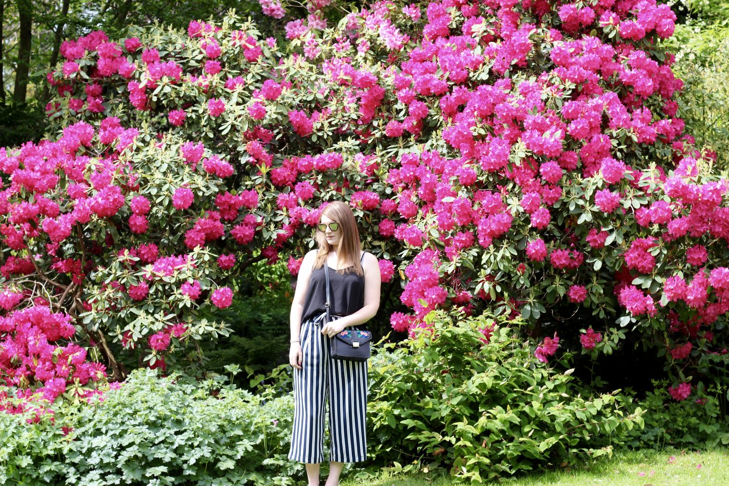 What I Wore | Culottes