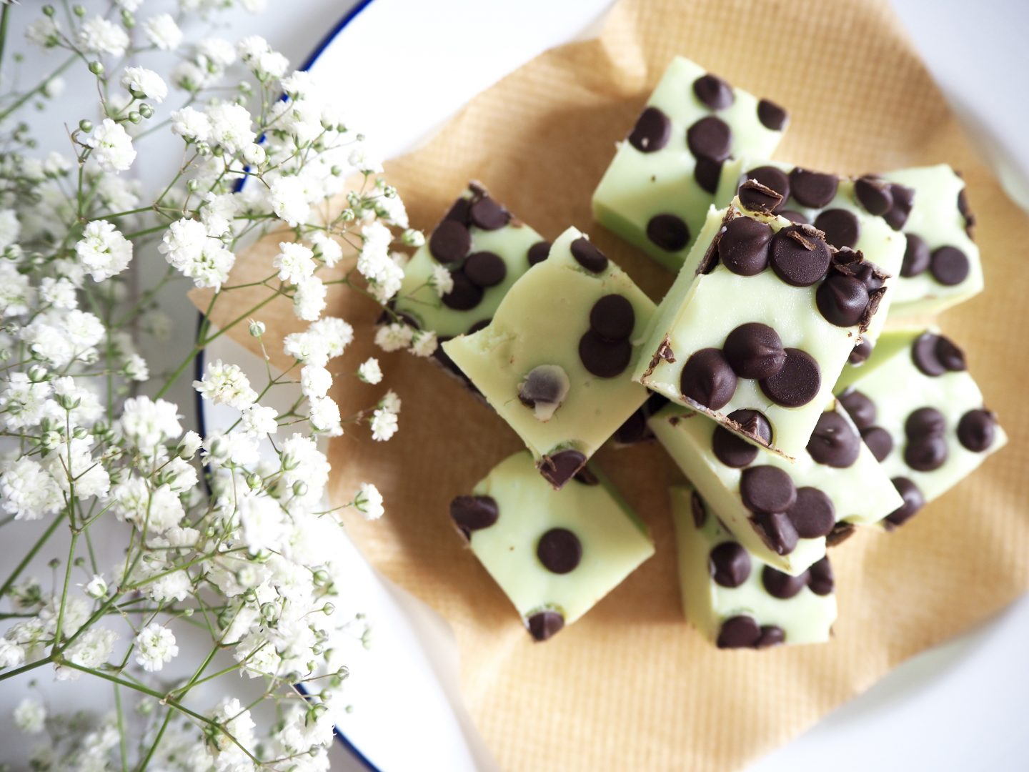 mint choc chip fudge